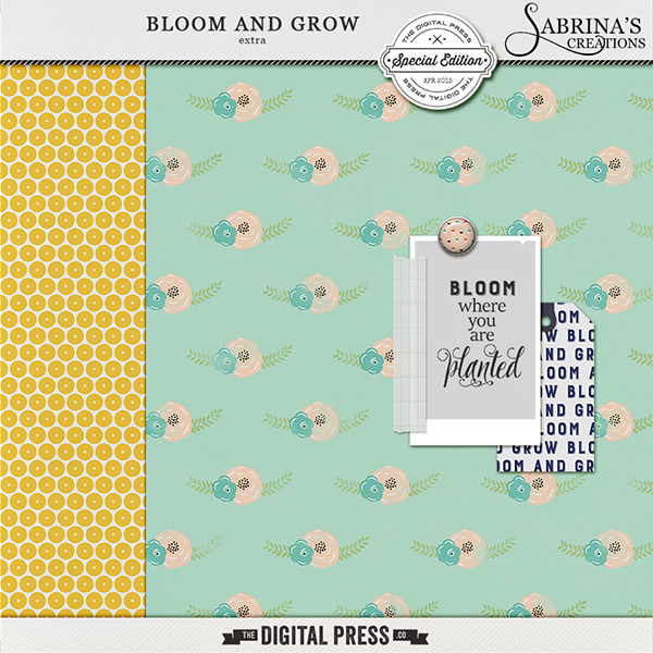 sc_extra_bloomandgrow_preview